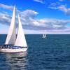 Sailboatmissionbay